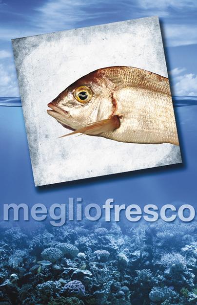 Pesce Roma Fragolino Pagello