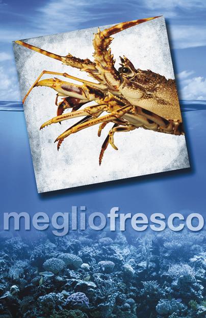 Pesce Roma Aragosta
